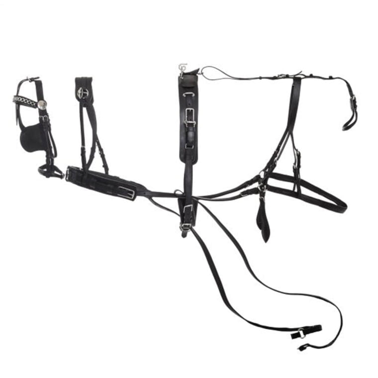 MOMPSO Basic leather harness