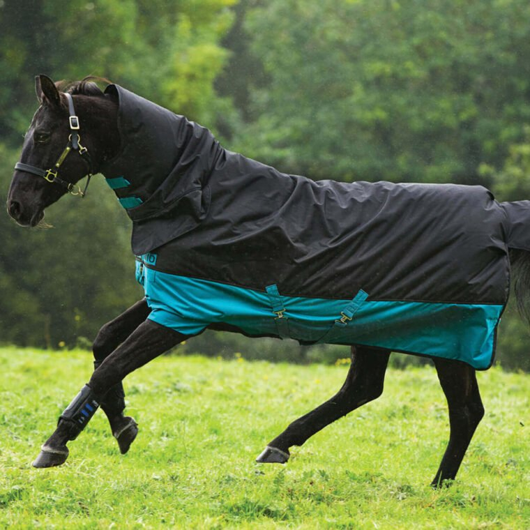 Horseware Mio All In One rug