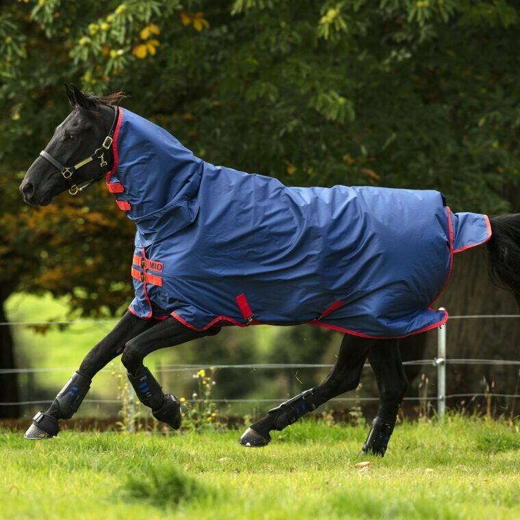 Horseware Mio All in One Rug 350gr